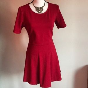Red Skater Fit N Flare Dress Fall